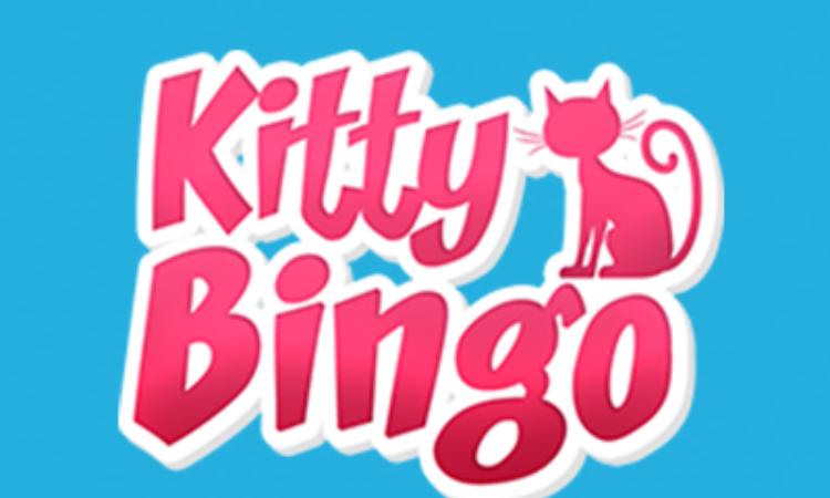 Kitty Bingo - £25